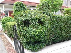 Urban topiary