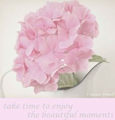 Take time to enjoy the beautiful moments