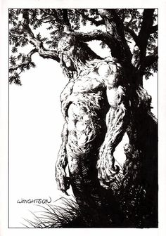 Swampthing, Bernie Wrightson