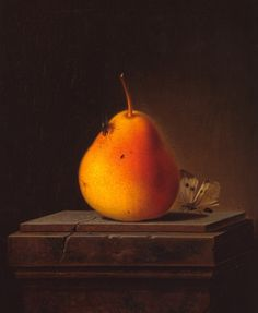 Pear with Insects — Justus Juncker