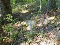 A tin marker, likely issued by the Dept. of Indian Affairs, marks the resting place of a student from the St Joseph's Indian residential sch... http://news.nationalpost.com/2013/02/18/it-was-obviously-a-policy-not-to-report-them-new-research-finds-at-least-3000-confirmed-indian-residential-school-deaths/