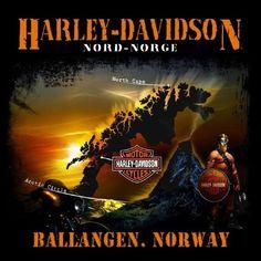 Harley Davidson Dealership, Harley Davidson Motor, Harley Davidson T Shirts, Harley Dealer, Harley Davidson Merchandise, Harley Shirts, Harley Davidson Pictures, Bobber Motorcycle, Motorcycles