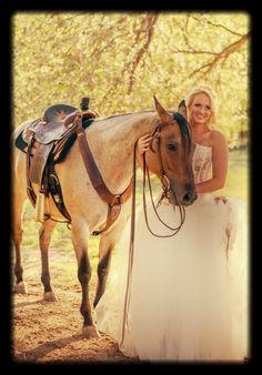 Horse bridals Lauren Moffett Photography
