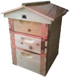 Homestead Beekeeping On Pinterest Top Bar Hive Beehive