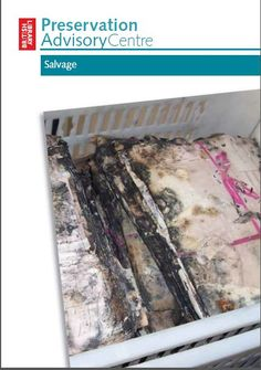 Salvaging Library and Archive Collections by the Preservation Advisory Centre of the British Library (pdf)