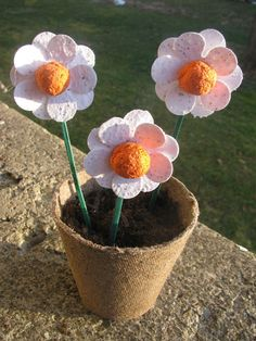 Spring Gift  Set Of 3 Plantable Flowers On Sticks In A Biodegradable Jiffy  Pot