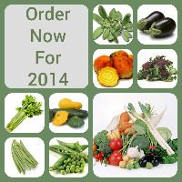 Vegetable plants can be purchased on our main veg website   http://www.vegetableplantsdirect.co.uk/