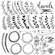 Items similar to Laurel Wreath Clipart Frames Digital Wreath Clip Art Chalkboard Leaves Laurel Frames Branch Clip Art Floral Clipart Frame PNG Vector on Etsy Art Clipart, Frame Clipart, Leaf Clipart, Clipart Design, Chalkboard Text, Chalkboard Paper, Chalkboard Clipart, How To Draw Ribbon, Doodles