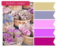 colori matrimonio rosa, fucsia e glicine   www.nozzemeravigliose.it