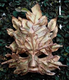 leaf mask, think this is beyond unique