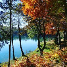 Auch der bunte Herbst macht am Steinsee Spaß