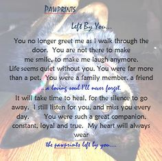 for my dad...he lost his dog and has been heartbroken about it as most people are when you lose a family member.  <3