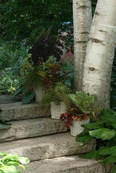 --Click through to read more about this garden!