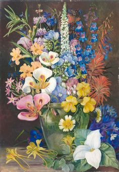 203. Group of Californian Wild Flowers. - Marianne North - Kew Gardens Botanical Prints - Kew Botanical Prints
