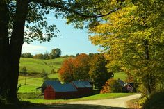 Lovely rolling hills on a farm in Vermont