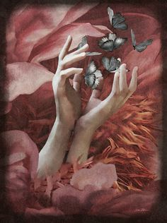 Daria Petrilli, Colours, Artist, Paintings, Illustrations, Flowers, Paint, Artists, Painting Art