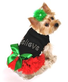 Believe Christmas Dog Dress available at http://doggyinwonderland.com/item_1796/Believe-Christmas-Dog-Dress.htm