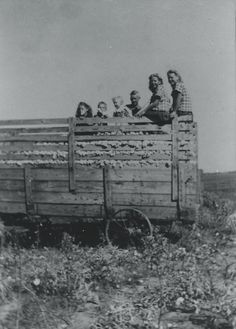 """Picking Cotton in 1943 """"This is a picture of all of the children in my family at that time."""""""