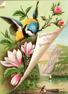 victorian cards   of victorian christmas cards have springtime flower images on them not ...