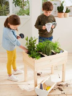 Planting Vegetables, Vegetable Garden, Diy Planters, Planter Pots, Outdoor Play Equipment, Cot Bumper, Strawberry Plants, Decorative Storage, Plantation
