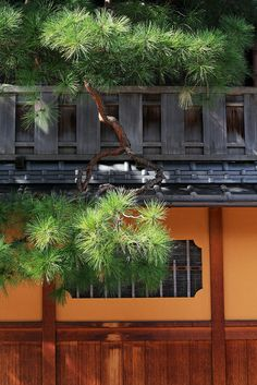Gion, Kyoto, Japan - I would love to see this in this light. Beautiful shot. S