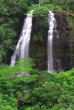 "Opaekaa Falls Wailua State Park in Kauai, Hawaii  Means ""rolling shrimp"""