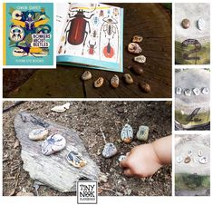 """Reading about beetles and rock painting (since we always end up with tons of rocks from our trips outside because """"they are all beautiful""""). Also we went outside to catch them in action and had fun with some counting."""