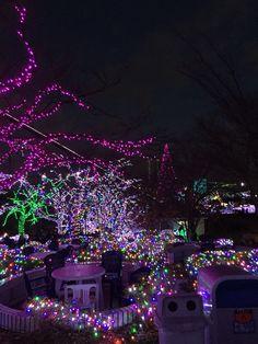 Illuminated park