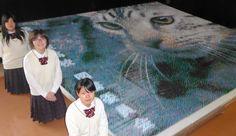 つまようじ17万本で猫アート 高校の図書委員会が制作