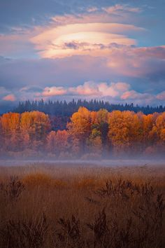 Mt. Adams, Trout Lake, Washington, USA, by John Williams