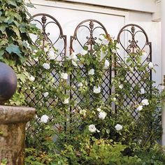 This Scroll Wall Trellis functions beautifully against a wall, positioned as a freestanding divider, or planted into an oversized container. Description from pinterest.com. I searched for this on bing.com/images