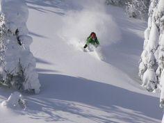 Séjour de glisse hors-piste guidé dans les Chic-Chocs - Domaine réparti sur trois montagnes - Différents niveaux possibles Chic Choc, Plein Air, Skiing, Snow, Outdoor, Winter Activities, Runway, Savages, Mountains