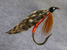 411fcec318b7d Tip: Orange floss Tail: None Ribbing: Orange floss Body: Brown floss  Hackle: Brown Wing: Brown mottled turkey *