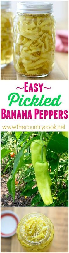 How to can and make this pickled banana peppers. Easy Pickled Banana Peppers recipe from The Country Cook Recipes With Banana Peppers, Pickled Banana Peppers, Stuffed Banana Peppers, Canning Banana Peppers, Hot Pepper Recipes, Canning Tips, Canning Recipes, Canning Food Preservation, Preserving Food