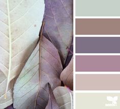 Farb-und Stilberatung mit www.farben-reich.com - leaf tones So beautiful colours...