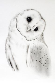 Original barn owl charcoal drawing by jaclynsstudio Bird Drawings, Colorful Drawings, Animal Drawings, Lechuza Tattoo, Owl Sketch, Charcoal Art, Graphite Drawings, Charcoal Drawings, Arte Sketchbook