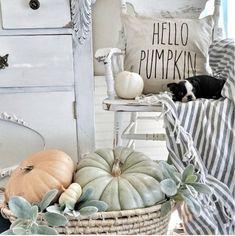 Hello Pumpkin/Rae Dunn Inspired/ Bonfires/Leaves/ Hayrides/ Fall Decor/ Farmhouse/ Autumn/ Co Thanksgiving Decorations, Seasonal Decor, Holiday Decor, Fall Decorations, Holiday Ideas, Vintage Thanksgiving, Thanksgiving Table, Holiday Gifts, Fall Home Decor