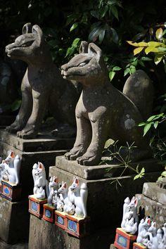 Foxes, Jouzan Inarijinja shrine,Shimane
