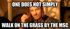 One does not simply walk on the grass by the MSC.