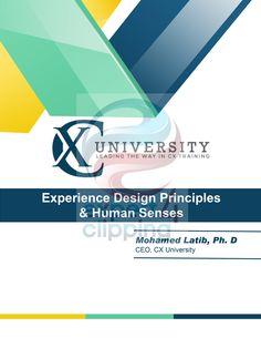 11 Best Graphic Design Images Design Web Design Websites Website