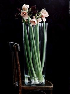 12 ideas to decorate with plants: amaryllis in Ikea vase