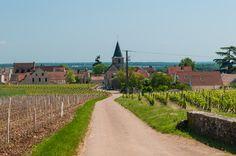 Vosne-Romanée, Bourgogne, France.