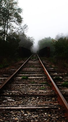 Trees Railroad Tracks #iPhone 5s #Wallpaper