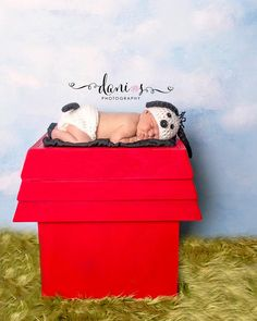 Hey, I found this really awesome Etsy listing at https://www.etsy.com/listing/174043288/pjs-snoopy-like-newborn-house-photo-prop