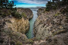 Pt. Lobos on trail to bird island.  #highwayone
