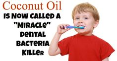 """Coconut Oil Is Now Called a """"Miracle"""" Dental Bacteria Killer"""
