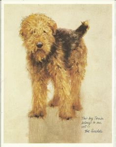 Airedale Terrier by Rien Poortvliet 1983 colour dog print