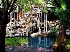 Cenote X Batún en San Antonio Mulix by Princesamaya05, via Flickr