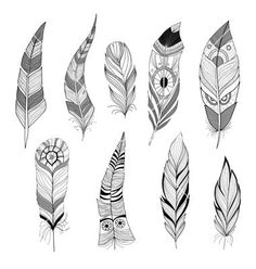 Native Feather Vector Set of feathers vector