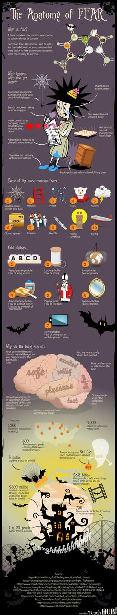 Anatomy of Fear Halloween Infographic www.teachhub.com